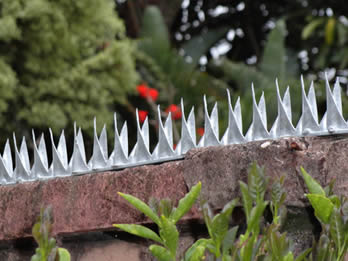 Deterrent Wall Spikes Protecting Your Families
